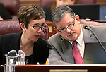 Nevada Assembly members Heidi Swank, D-Las Vegas, and James Oscarson, R-Pahrump, work in committee at the Legislative Building in Carson City, Nev., on Thursday, March 21, 2013..Photo by Cathleen Allison