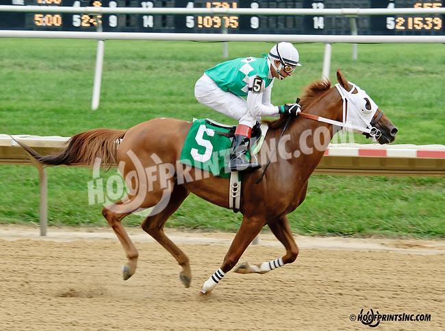 Dr Burn winning at Delaware Park on 9/10/14