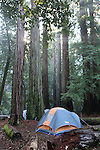 Tent at Big Basin Redwoods SP