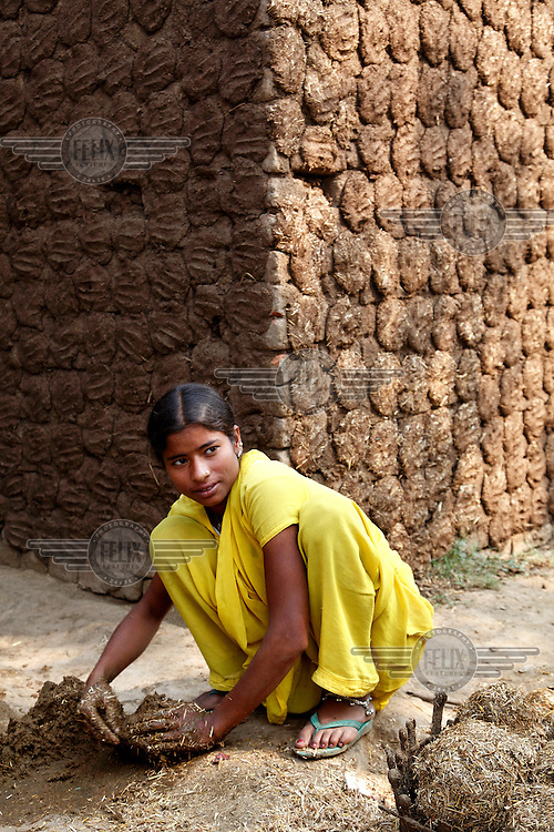 A girl makes balls out of dung which is used as fuel for cooking and heating.