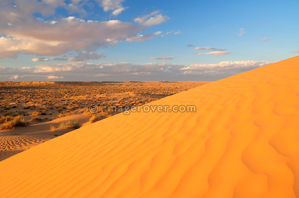 Africa, Tunisia, nr. Ksar Rhilane. Sunset in the the beautiful Sahara sand dunes north east of Ksar Ghilane.