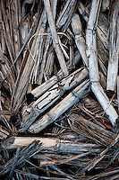 Sugar cane harvest debris on a cane haul road, Haili'imaile Plantation, Maui