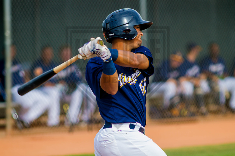 Milwaukee Brewers infielder Fidel Pena (65) during a minor league spring training intrasquad game on March 22nd, 2017 at Maryvale Baseball Park in Maryvale, Arizona.  (Brad Krause/Krause Sports Photography)