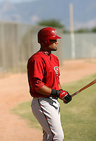 Nelson Gomez / Arizona Diamondbacks 2008 Instructional League..Photo by:  Bill Mitchell/Four Seam Images