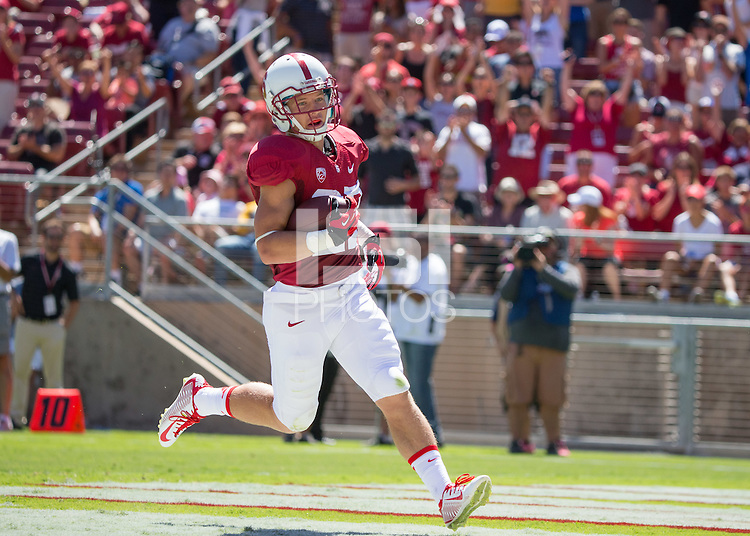 Stanford, CA -- August 30, 2014:  Stanford plays UC Davis in the season opener at Stanford Stadium. Stanford defeated the Aggies 45-0.