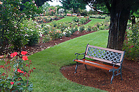 Bench in Heirloom Rose Gardens. Heirloom Gardens, Oregon