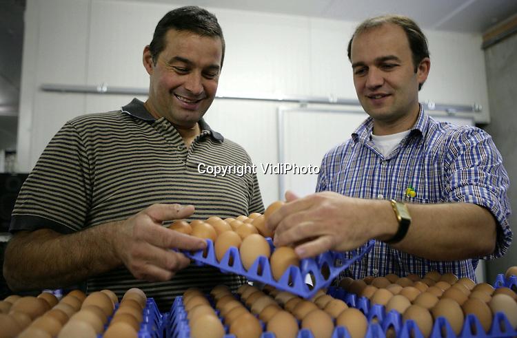 Foto: VidiPhoto..WAGENINGEN - Eieren sorteren bij pluimveehouder Hanno van Zetten uit Wageningen.