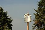 Martin birdhouse, Stoltzfus farm, Nippenose Valley, PA.