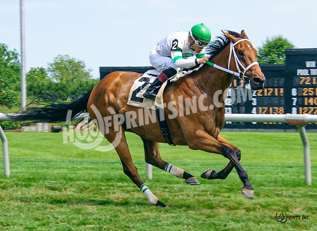Svindhal winning at Delaware Park on 6/15/17