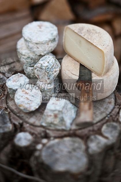 Europe/France/Midi-Pyrénées/65/Hautes-Pyrénées/Env d'Arreau/Guaux: Fromages de chèvre à la chèvrerie: Le Pitou de Dominique Parisel