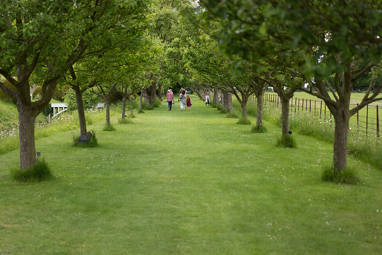 Helmingham Hall gardens in Suffolk England. The Apple Walk during tan open day with public