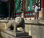 Lion Guardian and small boy at Hall of the Great Hero, Jogye-sa Temple, Seoulor Daeung-jeon at Jogye-sa Buddhist Temple, Seoul, South Korea. Jogyesa is the main temple of the Jogye Order of Korean Buddhism, and has a important part in Seon Buddhism. Located in Gyeonji-dong, Jongno-gu within in the old city of Seoul.