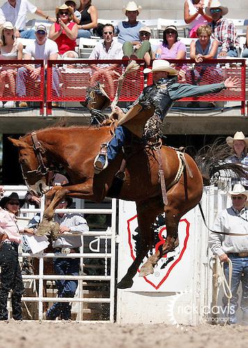 Dan Mortenson Saddle Bronc riding at Cheyenne Fronteir Days