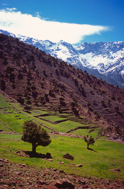 Trekking to Azib Tamsoult, High Atlas, Morocco, 2017
