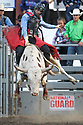 20 Aug 2014: Chase Robbins riding the bull Toll Free scored a 77 during the first round of the Seminole Hard Rock Extreme Bulls competition at the Kitsap County Stampede in Bremerton, Washington.