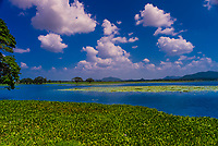 Tissa Lake, Tissamaharama, Southern Province, Sri Lanka.