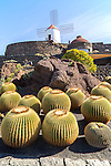 Windmill Jardin de Cactus designed by César Manrique, Guatiza. Lanzarote, Canary Islands, Spain.