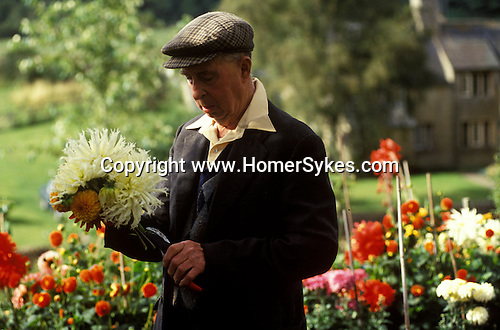 Eastleach Turville, Gloucestershire, England. Traditional village annual fete. Albert Waring who has lived here all his life cuts his prize Dahlias, they are for the flower competition and then he will place them on his wife's grave.