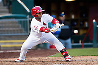 Audry Perez #5 of the Springfield Cardinals lays down a bunt during a game against the Tulsa Drillers at Hammons Field on May 4, 2013 in Springfield, Missouri. (David Welker/Four Seam Images)