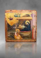 Gothic painted panel of the Nativity scene by Taddeo Gabbi of Florence, circa 1325, tempera and gold leaf on wood. National Museum of Catalan Art, Barcelona, Spain, inv no: MNAC 212807. Against a grey art background. <br /> Taddeo Gabbi, one of Giotto's most brilliant disciples, painted this Nativity when he was still part of Giotto's workshop. The painting has many of Giotto's hallmarks such as  spatial illusionism or the reality of figures that can be seen in the nativity of the Peruzzi Chapel.<br /> <br /> SPANISH<br /> <br /> Taddeo Gabbi, uno de los discipulos mas brillantes de Giotto, debio pintar esta Natividad cuando aun formaba parte del taller del maestro. En ella se ven las conquistas de la &quot;revolucion giottesca&quot;, como el illusioismo espacial o el realismo de las figuras. Maria arropa a Jesus dentro del establo, mientras los sobrevuela un grupo de angeles. La posicion de uno de ellos y la presencia de una oveja indican que la composicion se completaba a la izquierda con el Anuncio a los pastores. En primer termino aparecen un pensativo Jose y las dos parteras que susurran, un recurso ya utilizado pr Giotto en los frescos de la Capilla Peruzzi.
