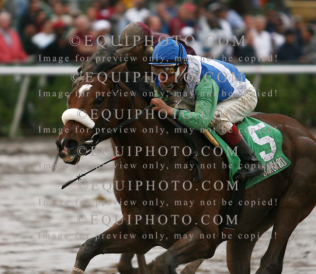 Barbaro #5 with Edgar Prado riding won the Holy Bull STakes at Gulfstream Park in Hallandale, Florida on Saturday February 4, 2006. Photo By Bill Denver/EQUI-PHOTO.