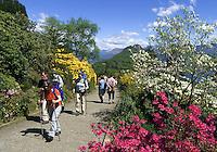 CHE, Schweiz, Tessin, Carona: Freizeit im Botanischen Park San Grato - Nordic Walking | CHE, Switzerland, Ticino, Carona: nordic walking at Botanical Park San Grato