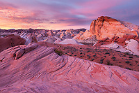 Dawn colors the sky and rock in shades of pink over Valley of Fire State Park, Nevada.