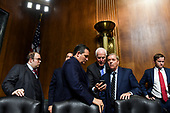 WASHINGTON, DC - SEPTEMBER 27: A group including Sen. Ted Cruz (R-Tex.), center, Sen. John Cornyn (R-Tex.) (holding phone) and Sen. Lindsey O. Graham (R-S.C.) and other staff at a Senate Judiciary Committee hearing on Thursday, September 27, 2018 on Capitol Hill. (Matt McClain/Pool/The Washington Post)
