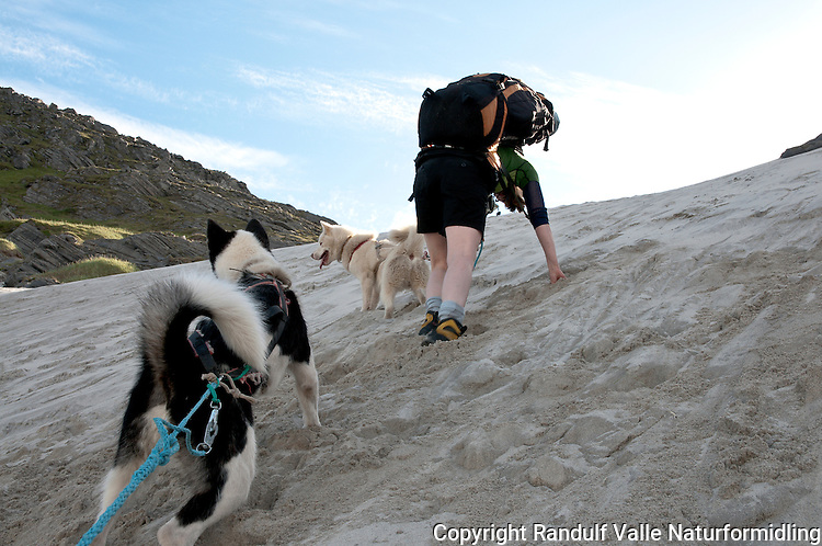 Dame og hund på vei opp Sandfjellet på Sørøya. ---- Woman and dog hiking up sandy slope.