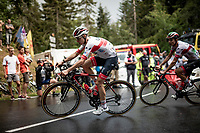 David de la Cruz (ESP/UAE-Emirates) up the Col de Porte (final climb to the finish)<br /> <br /> Stage 2: Vienne to Col de Porte (135km)<br /> 72st Critérium du Dauphiné 2020 (2.UWT)<br /> <br /> ©kramon