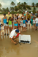 Curious children and parents observe olive ridley turtle hatchlings, Lepidochelys olivacea, being released into the ocean , Costa do Sauipe, Bahia, Brazil South Atlantic