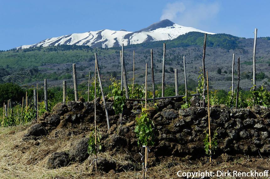 Blick auf Etna bei Linguaglossa, Weinbau, Sizilien, Italien