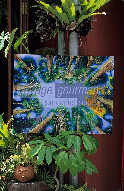 Océanie/Australie/Queensland/Kuranda: Artisanat aborigène sur le marché