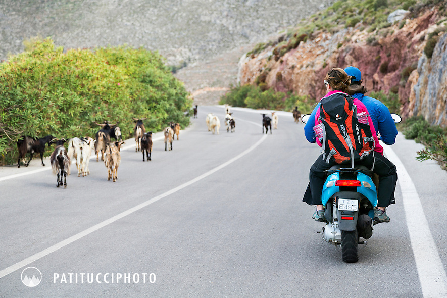A climbing couple riding a scooter to go climbing on the island of Kalymnos, Greece. They are passing a group of goats that are walking on the road.