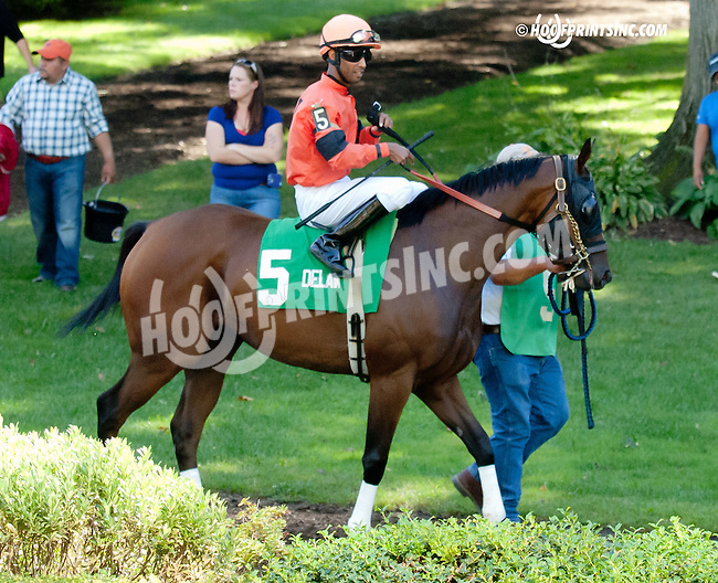 Tomorrow's Tale before The Damitrius Stakes at Delaware Park on 9/4/13