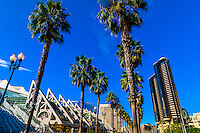 California-San Diego-Misc.