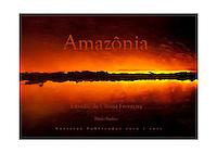 """Projeto fotográfico """"Amazônia Estradas da Última Fronteira""""de Paulo Santos.<br /> Versões Belém e Brasília"""