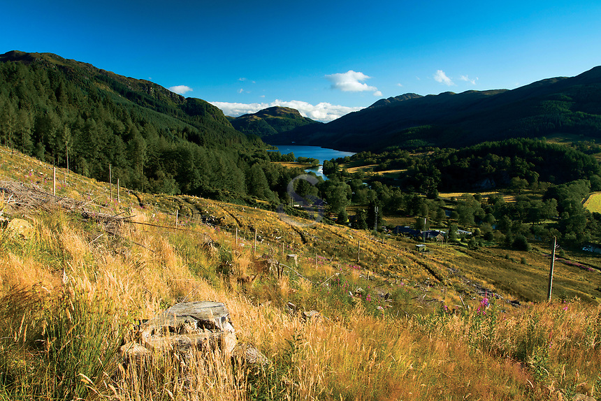 Loch Lubnaig and Beinn an t-Sidhein from the lower slopes of Ben Ledi, Loch Lomond and the Trossachs National Park, Stirlingshire