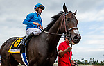 MAY 18: Bolo with Florent Geroux wins the Shoemaker Mile at Santa Anita at Santa Anita Park in Arcadia, California on May 27, 2019. Evers/Eclipse Sportswire/CSM