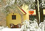 Sullivan County. Pumpkin light post with snow.