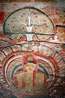 Magnificent mural cave paintings on the ceilings and walls in the Dambulla Caves. This temple complex dates back to the 1st century BC. and is a sacred pilgrimage site for 22 centuries, it is a cave monastery, with five sanctuaries, the largest, best-preserved cave-temple complex in Sri Lanka. The Buddhist mural paintings (covering an area of 2,100 m2 ) are of particular importance, as are the 157 statues.<br /> <br /> Prehistoric Sri Lankans would have lived in these cave complexes before the arrival of Buddhism in Sri Lanka as there are burial sites with human skeletons about 2700 years old in this area, at Ibbankatuwa near the Dambulla cave complexes.<br /> The rock of Dambulla is the centre of a Buddhist cave-temple complex established in the 3rd century B.C. and occupied continuously to this day.