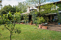 The mature garden is planted with lemon trees in terracotta containers which frame a small lawn