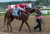 Gun Runner (no. 2) wins the Grade 1 Woodward Stakes September 2 at Saratoga Race Course, Saratoga Springs, NY, completing the Whitney/Woodward double. The winner, ridden by Florent Geroux and trained by Steven Asmussen, was clear through the stretch and won by ten lengths in the mile and 1/8th race against four opponents. (Robert Simmons/Eclipse Sportswire)
