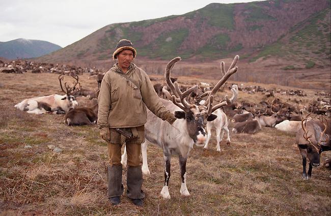 Chukchi reindeer herder, Sergei Elevye, with one of his bull reindeer.Koryakia, Kamchatka, Siberia, Russia.