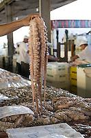SAO PAULO, SP, 27 DE MARÇO DE 2013. OITAVA SANTA FEIRA DO PEIXE NA CEAGESP. Polvo  a venda na oitava santa feira do peixe que acontece no Patio do Pescado da  Ceagesp.  Esta feira acontece antes das festividades da semana santa e os clientes podem comprar vários tipos de peixes com preço de atacado. A feira acontece ate o dia 28 de março a partir das 14 horas. FOTO ADRIANA SPACA/BRAZIL PHOTO PRESS
