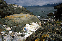 Caught by rocks after drifting from the industrial parks and trash piles of Ushuaia, broken pieces of plastic foam packing for television components and other trash can be found 20 miles away from the city on the remote Beagle Channel. The provincial government of Tierra del Fuego lacks sufficient money or political will to enforce new anti-pollution laws.