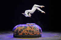 LONDON, ENGLAND - JANUARY 9: Cirque du Soleil - OVO at the Royal Albert Hall on January 9, 2018 in London, England.<br /> CAP/MAR<br /> &copy;MAR/Capital Pictures