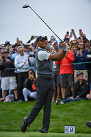 Tiger Woods (USA) watches his tee shot on 9 during round 1 of the 2019 US Open, Pebble Beach Golf Links, Monterrey, California, USA. 6/13/2019.<br /> Picture: Golffile | Ken Murray<br /> <br /> All photo usage must carry mandatory copyright credit (© Golffile | Ken Murray)