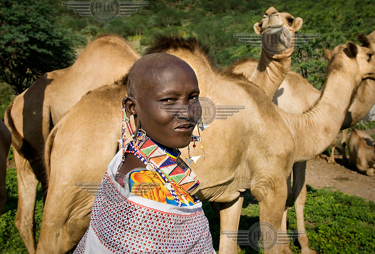 The wife of Ntete ole Kushuni, a prominent Maasai (Masai) herdsman, tends to her husband's camels. With the help of Practical Action, an NGO, camels have been introduced to the semi-nomadic Maasai community in the Great Rift Valley in response to the long periods of drought that have killed many of the Maasai's domestic animals in recent years. It is hoped that the camels, which are more resilient than the Maasai's traditional livestock and able to survive in harsh dry conditions, will help the Maasai people to adapt to the climate change.