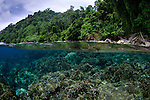 Spice Islands, Maluku Region, Halmahera, Indonesia, Pacific Ocean